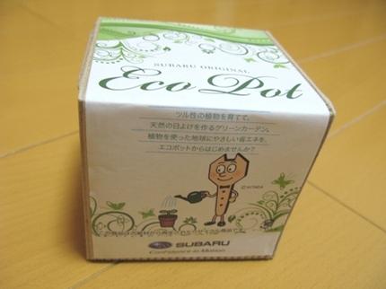 Eco_pot