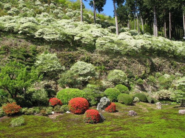 大龍寺庭園